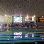 Наши пловцы – призеры первенства Краснодарского края